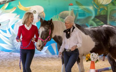 Four important life (and leadership) lessons I've learnt from horses. Yes – horses!